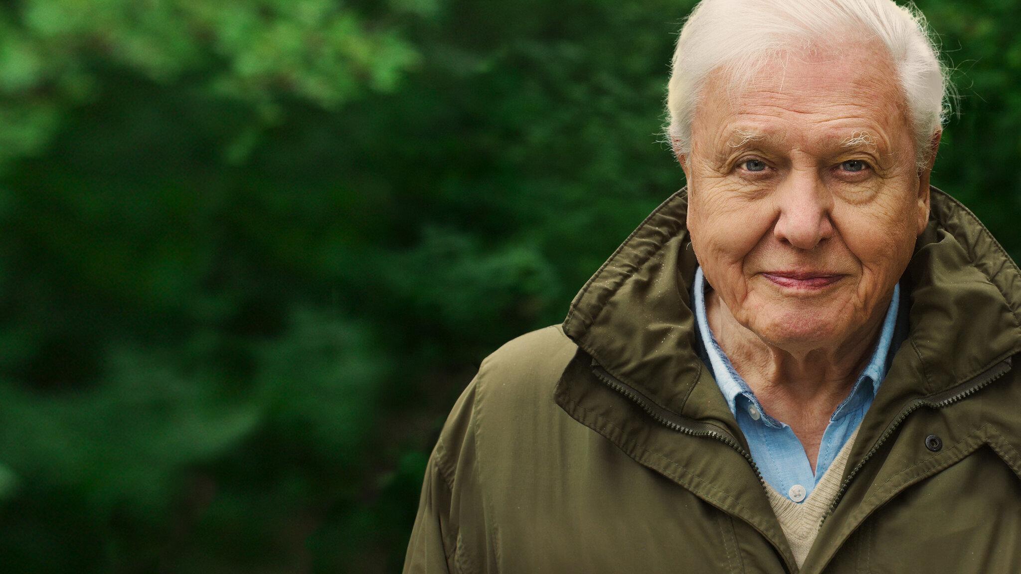 David Attenborough Netflix A Life on Our Planet
